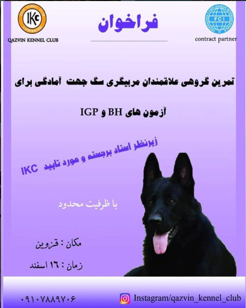 تمرین گروهی مربیان سگ ایران کنل کلاب