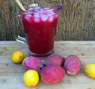 طرز مصرف میوه کاکتوس