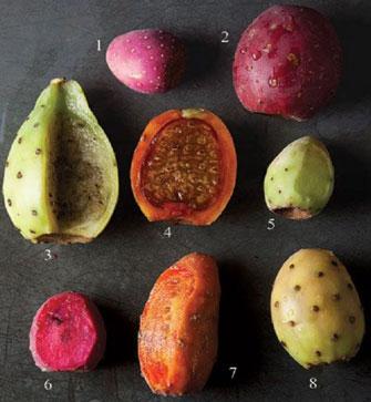 انواع میوه کاکتوس