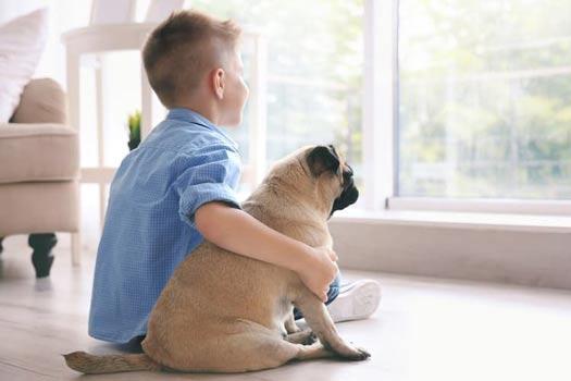 سگ برای کودکان
