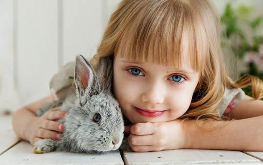 خرگوش حیوان خانگی مناسب برای کودکان