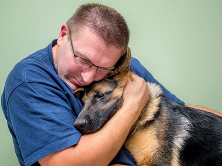 شفا افسردگی با حیوانات