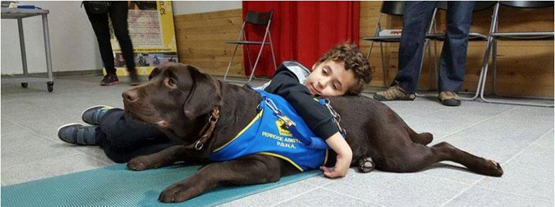 اتیسم در کودکان و درمان و شفا با سگ